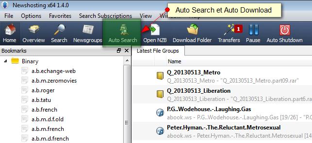 Newshosting auto search